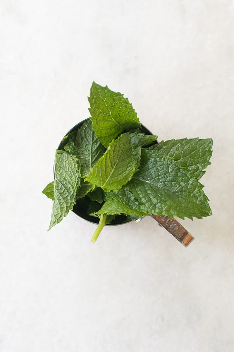Fresh mint in a measuring cup on a marble table.