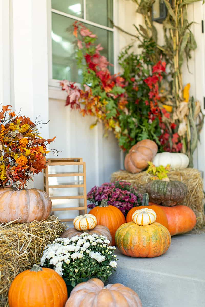 Stunning fall porch filled with pumpkins.