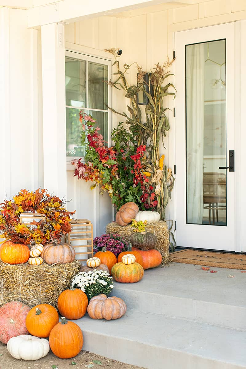 Tall corn stalks, pumpkins and hay bales on a decorated fall porch.