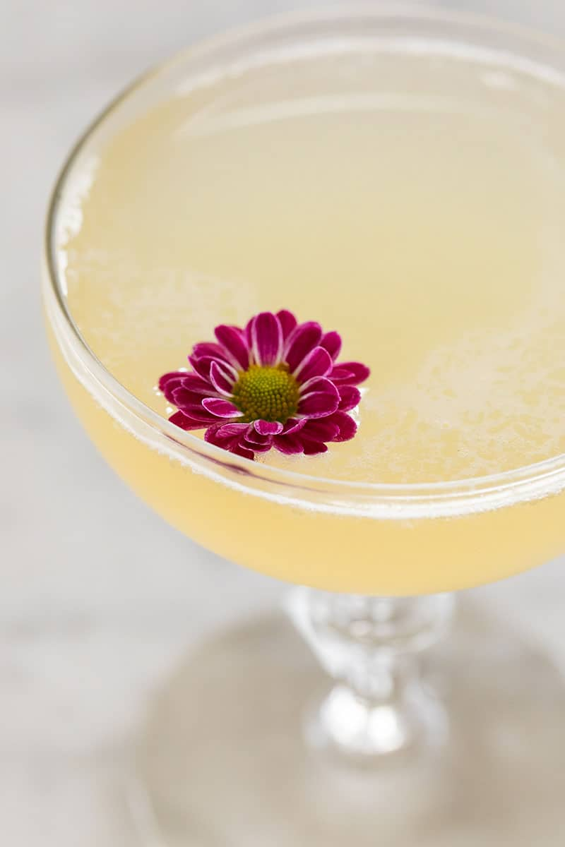 yellow cocktail in a coupe glass with a tiny purple flower