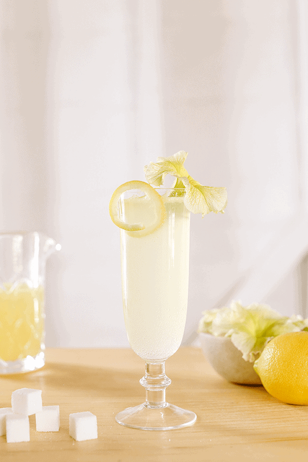 Classic cocktail French 75 in a glass with lemon rind and flower