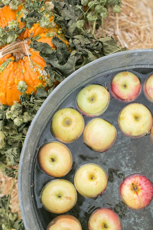 Apples in an old rustic bin.