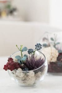 How to Make Fall Glass Terrariums