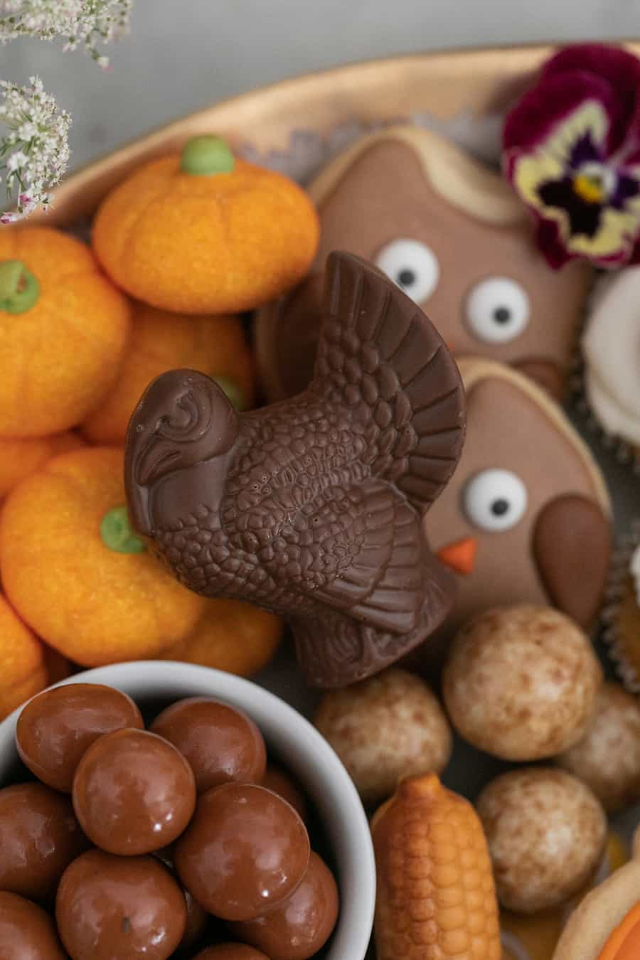 Chocolate turkey