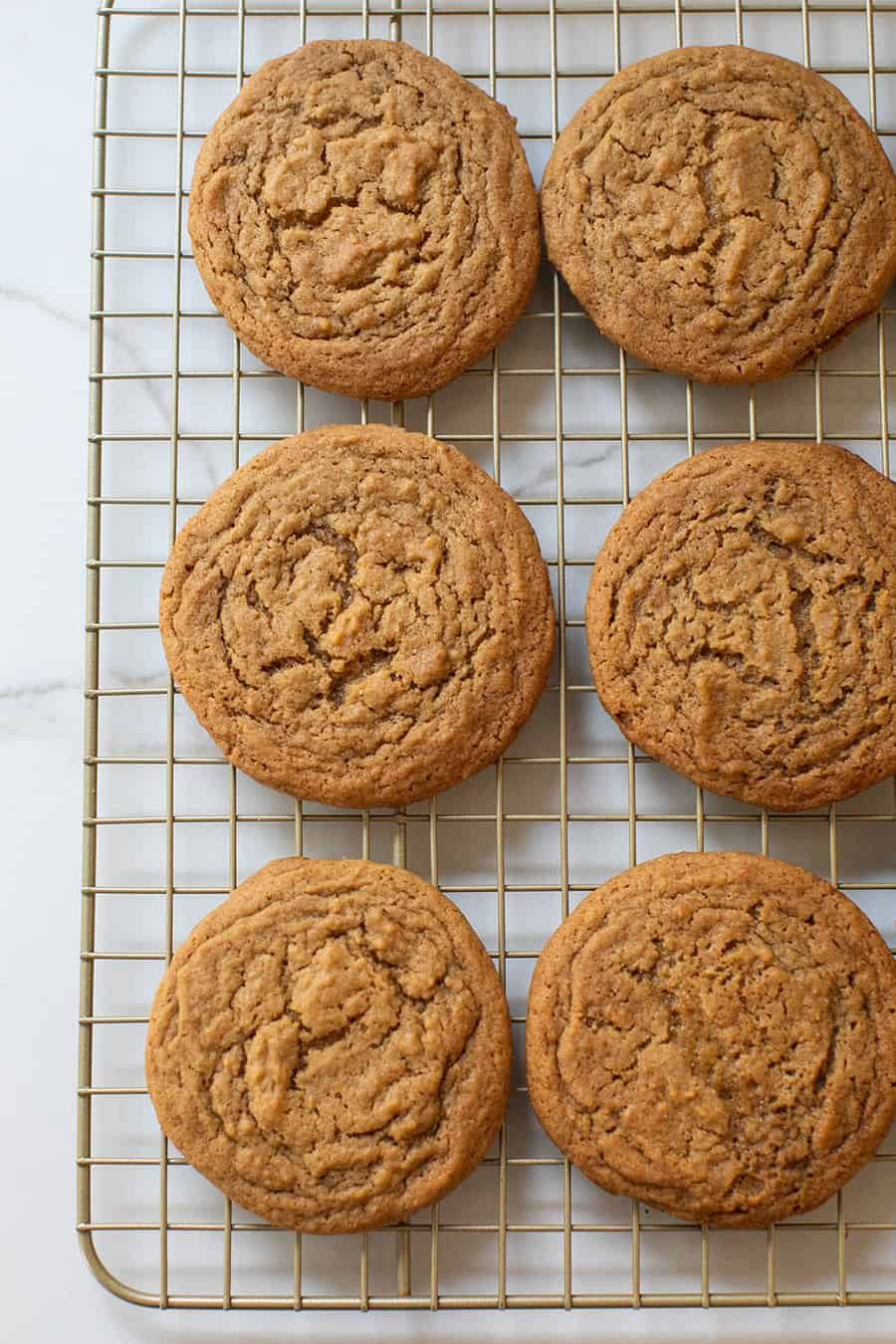 Ginger cookies on a cookie sheet.