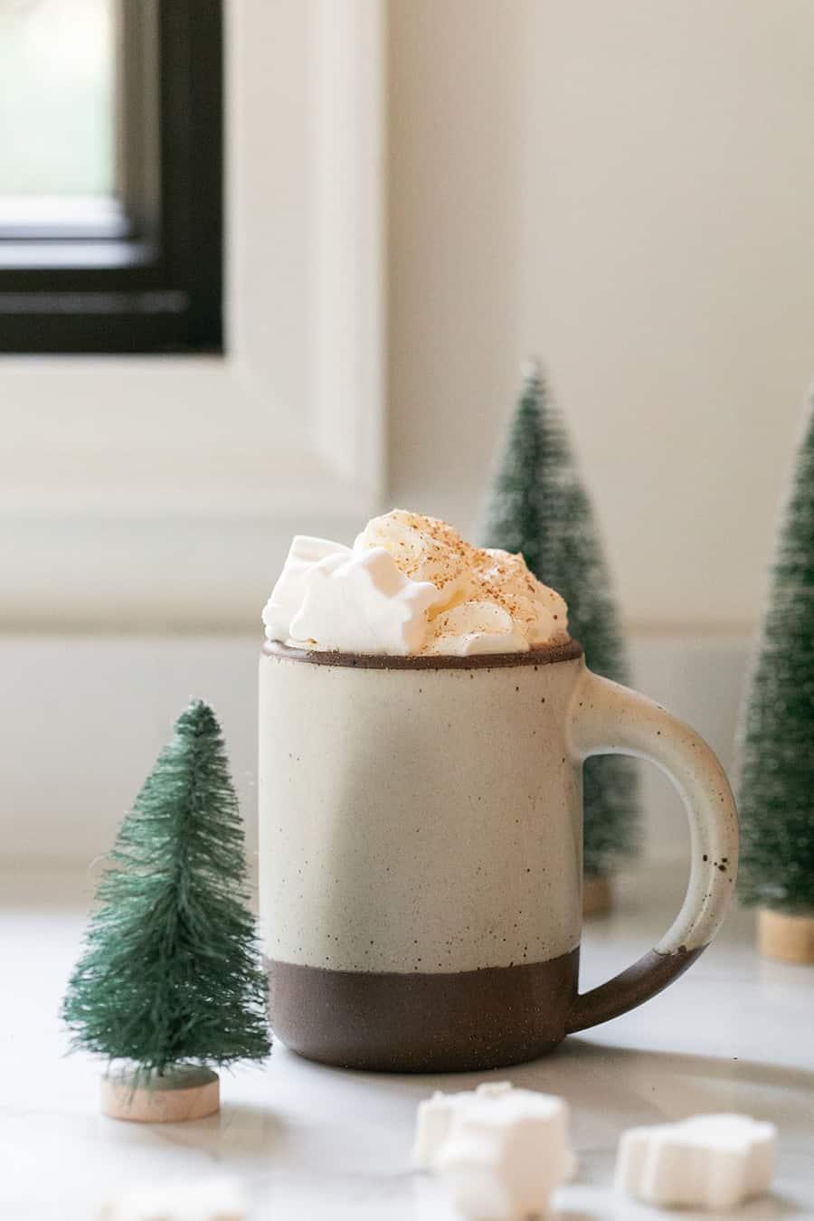 Mug filled with hot chocolate recipe
