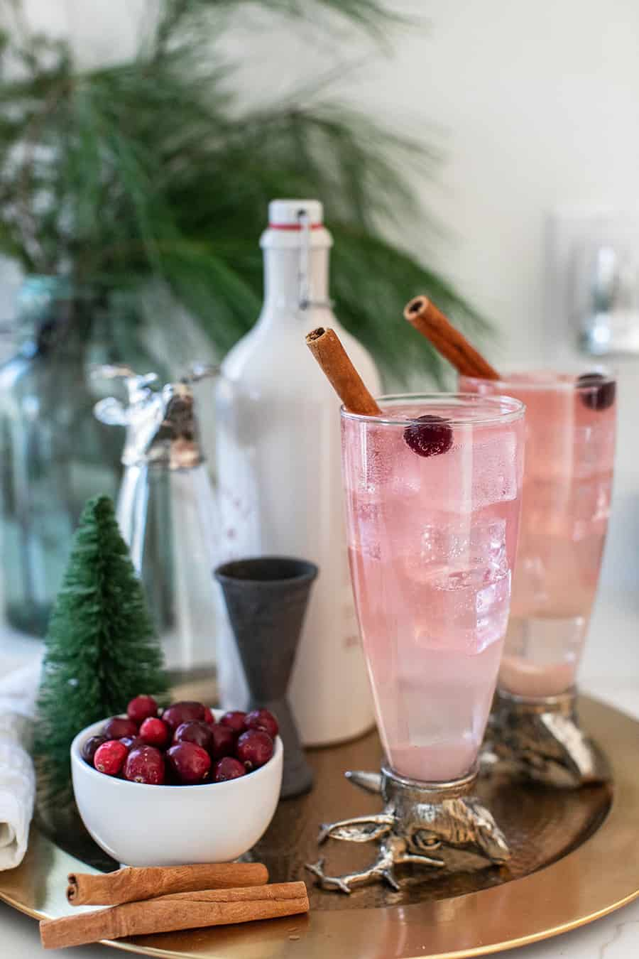 Christmas cocktail with pink color, cranberry and cinnamon