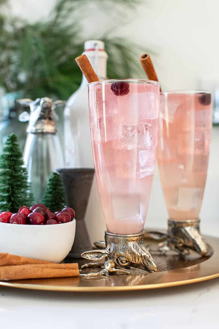 Festive collins cocktail with cranberry and cinnamon syrup