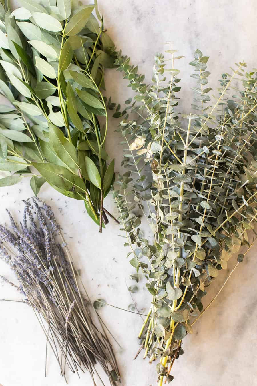 eucalyptus and lavender