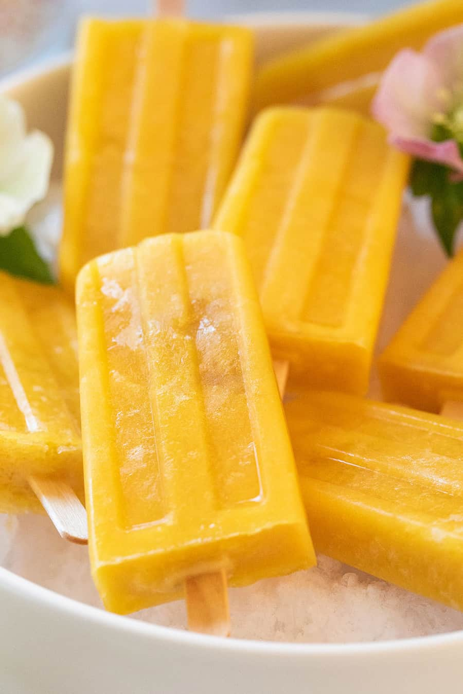 Fruit popsicle recipe