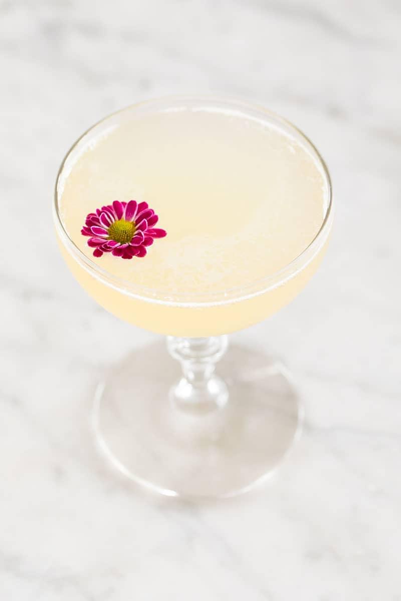 Three ingredient bees knees cocktail