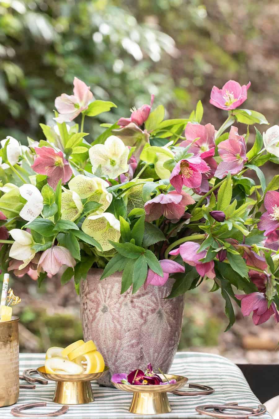 Vase full of Lenton Roses