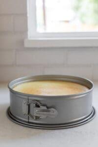 cheesecake in a springform pan