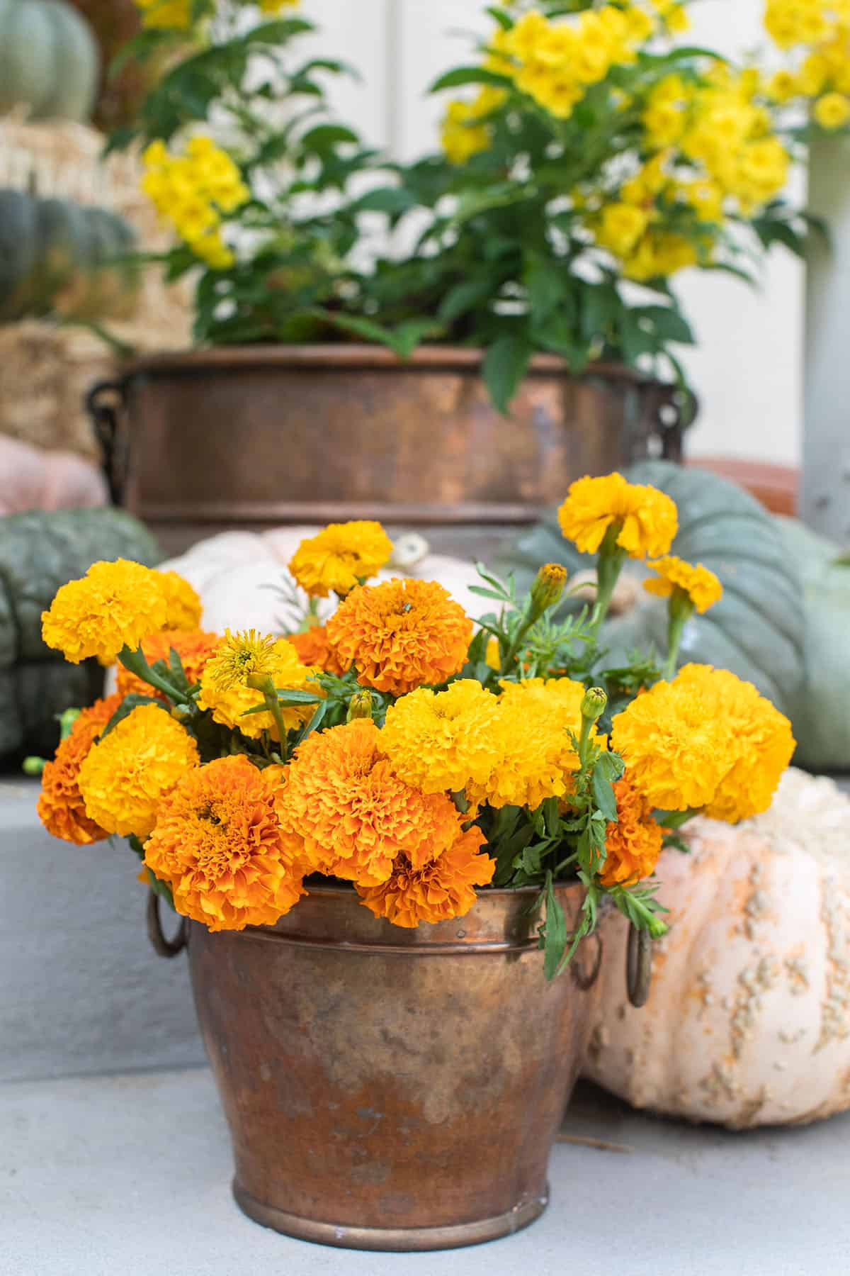 fall porch flowers