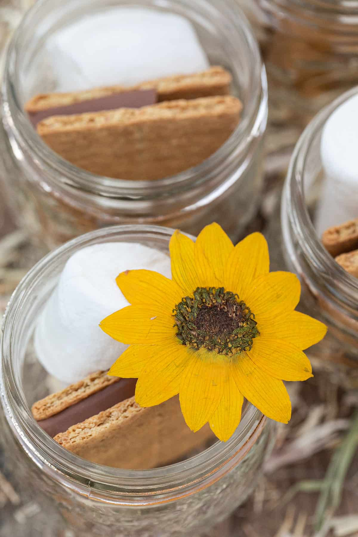s'mores for fall