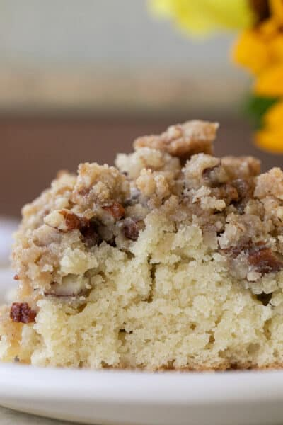 crumb cake with crumb topping