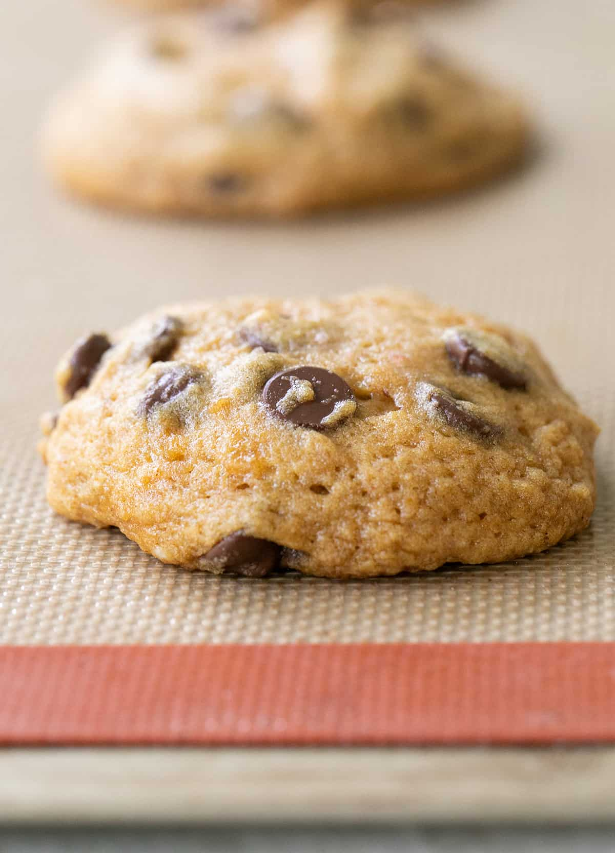 pumpkin chocolate chip cookie out of the oven